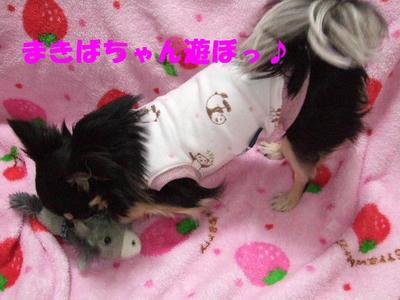 2008_03170016.JPG