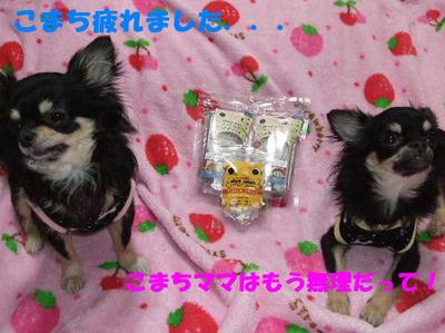 2008_03190021.JPG