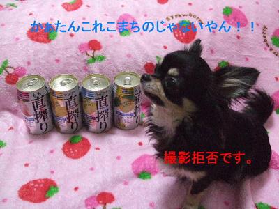 2008_03290002.JPG