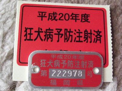 2008_06120004.JPG