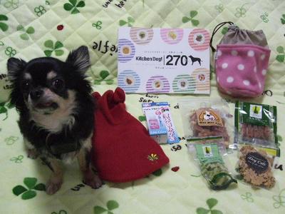 2009_01110007.JPG