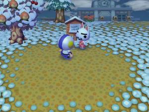 Wiiの街へいこうよどうぶつの森のあやしいネコ訪問