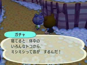 Wiiの街へいこうよどうぶつの森,最近あったこわいこと