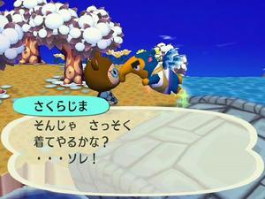 Wiiの街へいこうよどうぶつの森,さくらじまの引っ越し