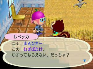Wiiの街へいこうよどうぶつの森,フリーマーケットのむぎばたけ