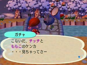 Wiiの街へいこうよどうぶつの森,チッチとベンの恋の行方。