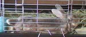 110815_8.jpg