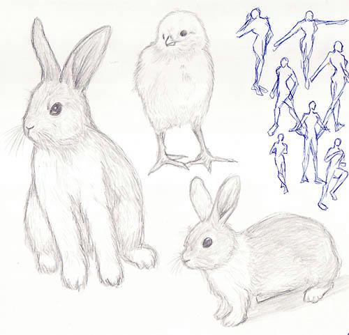 子ウサギと子ニワトリ