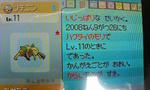 2008081612270002.JPG