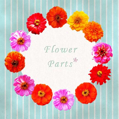 花パーツ12個セットイメージ画像
