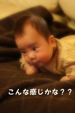 IMG_6755.jpg