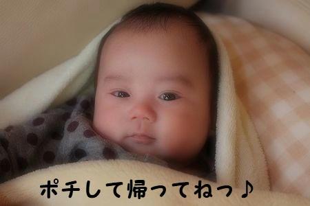 IMG_6785.jpg