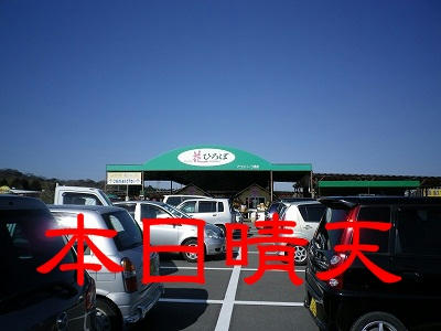 IMGP0591.jpg