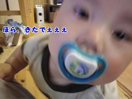 IMGP0810.jpg