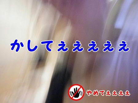 IMGP0815.jpg