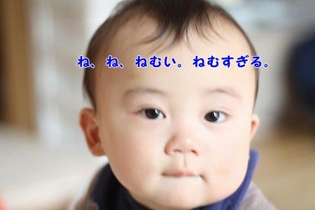 IMG_2371.jpg