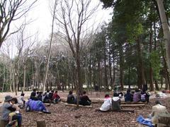 憩いの森の全景です…長閑です