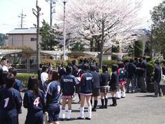 桜もまた綺麗でした♪