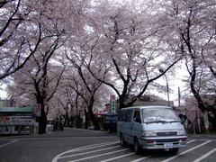 武蔵高萩駅前にて…素晴らしいですね