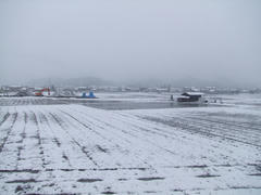 平地な土地ですが、内陸に来ているので雪は多いです