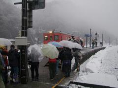 平岩駅では、もはやこんな状態に…