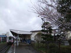仙崎駅にて…桜がもうすぐ!