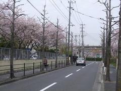 城野駅での乗り換えの道筋…