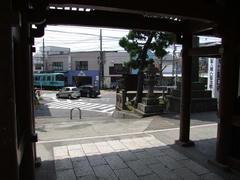 龍口寺から列車を臨む