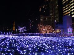 東京タワーがアクセントかも…!