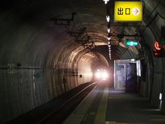 新藤原方面からの列車が到着!