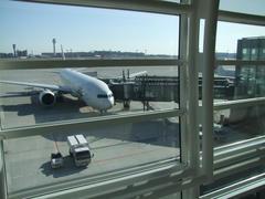 これから飛び立つ、上海行きのJAL81便