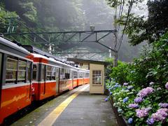 山間の小さな駅です…塔ノ沢駅