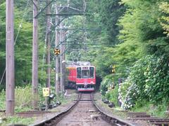 箱根登山鉄道では珍しい、直線区間