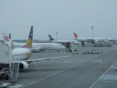 色々な航空会社が集まっていました