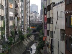 渋谷川との取り合わせも過去のものに…