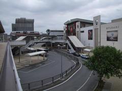 沖縄の最近の見所、おもろまち駅付近