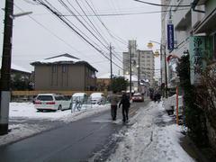 東京らしからぬ雪景色♪