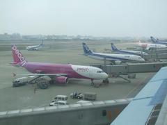 福岡空港到着!全日空との対比が面白いです