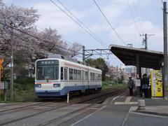 桜が綺麗だった萩原駅
