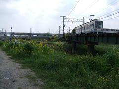 楠橋駅の南側で、新幹線と交差します