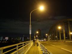 夜中3:00頃に、淀川を歩いて渡る(笑)