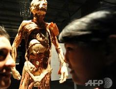 ウイグル,人体標本展,臓器狩り,中国,中国共産党,臓器売買,移植,死刑囚,臓器移植,人権,収容所,少数民族,