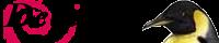 debian bunner02