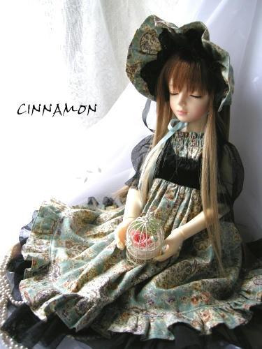 cinnamon04f.jpg