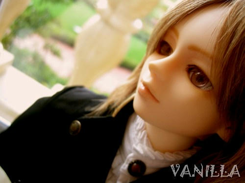vanilla04f.jpg