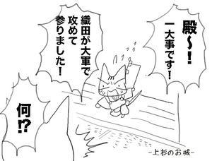 天地猫1-1