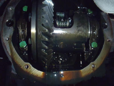 P3230298.JPG