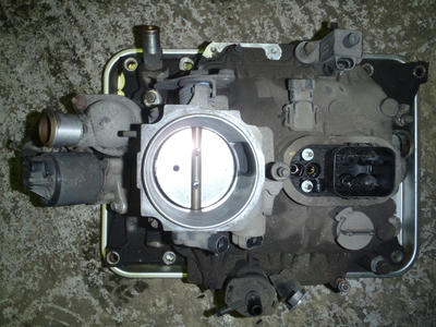 P3110075.JPG