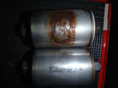 P3150131.JPG