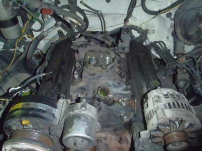 P9070168.JPG